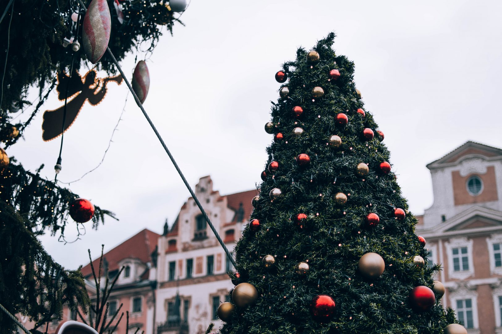 brown and yellow baubles on tree during daytime