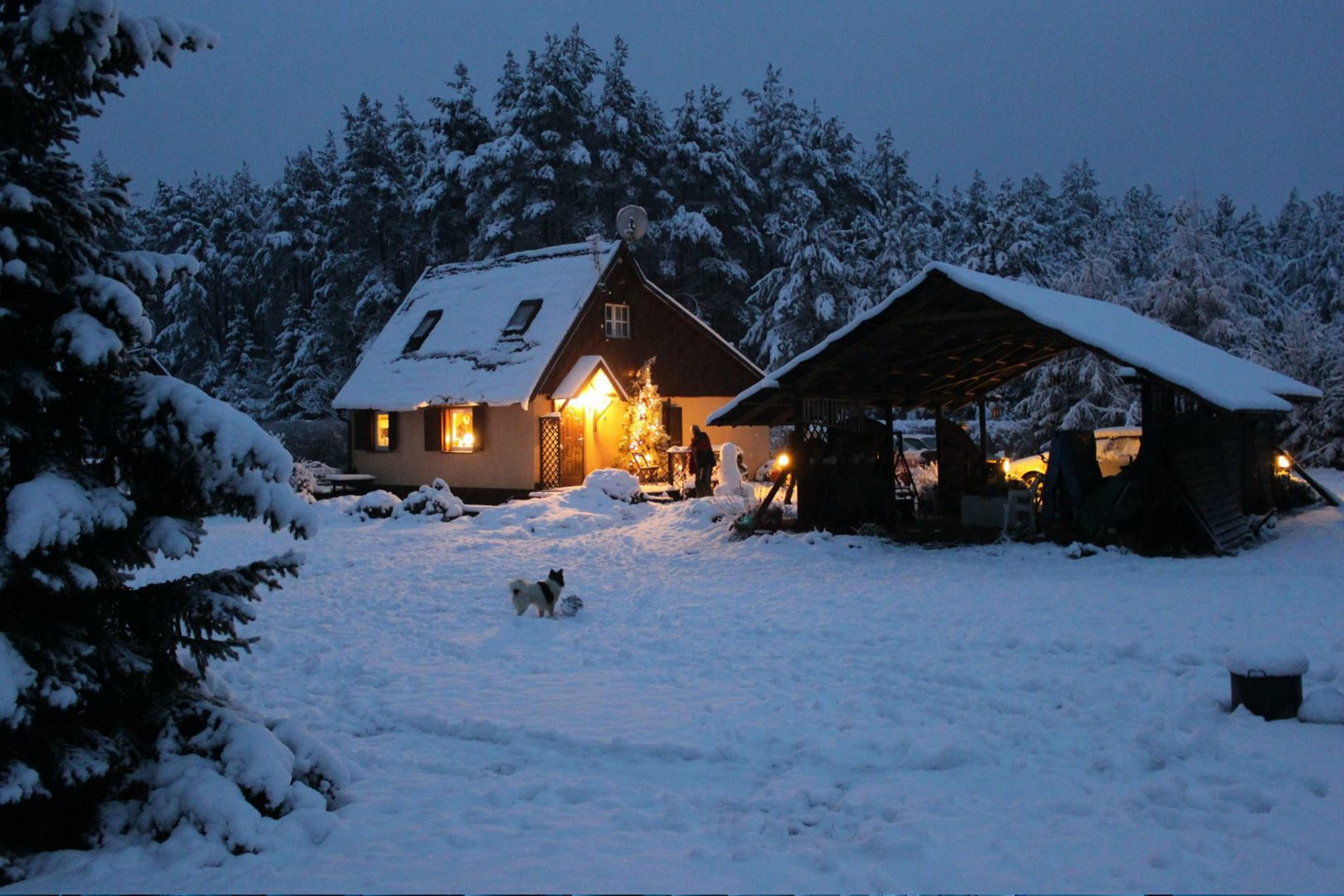 2 house in snow