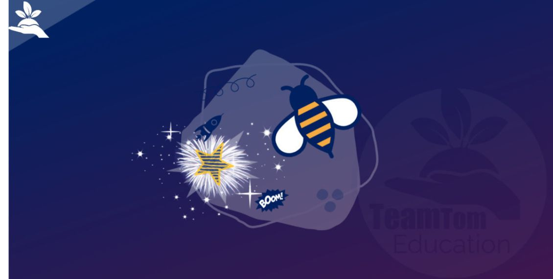 Supernovas Bees Main Ideas Blog Post 2019