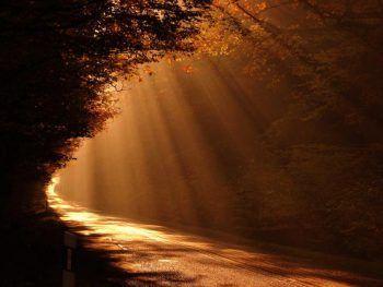La luz y la verdad