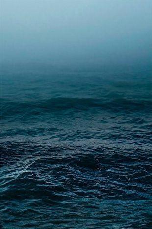 El modelo creativo del mar