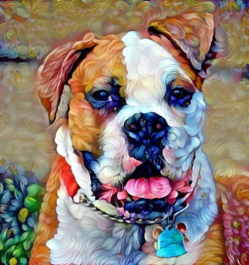 Rocky the Boxer in Flowers