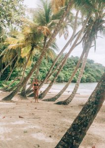 La Sagesse Beach palms
