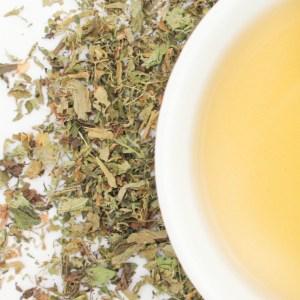 Stevia Herbal Leaf brewed tea