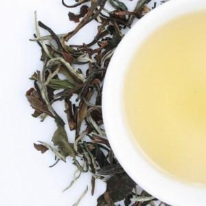 White Peony Loose Leaf White Tea brewed tea
