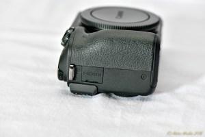 CanonEOSM - 850_7534.jpg