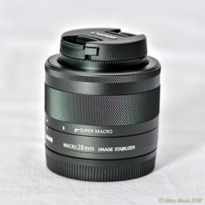 CanonEOSM - 850_7538.jpg