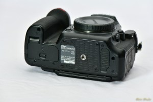 NikonD500 - 850_3505.jpg
