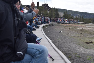 It's only April and already people crowd around Old Faithful.
