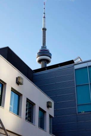 CN Tower and other buildings, Toronto, Ontario, Canada