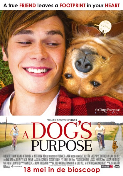 A Dog's Purpose Dutch Poster
