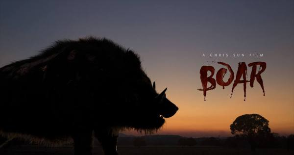 Boar Teaser