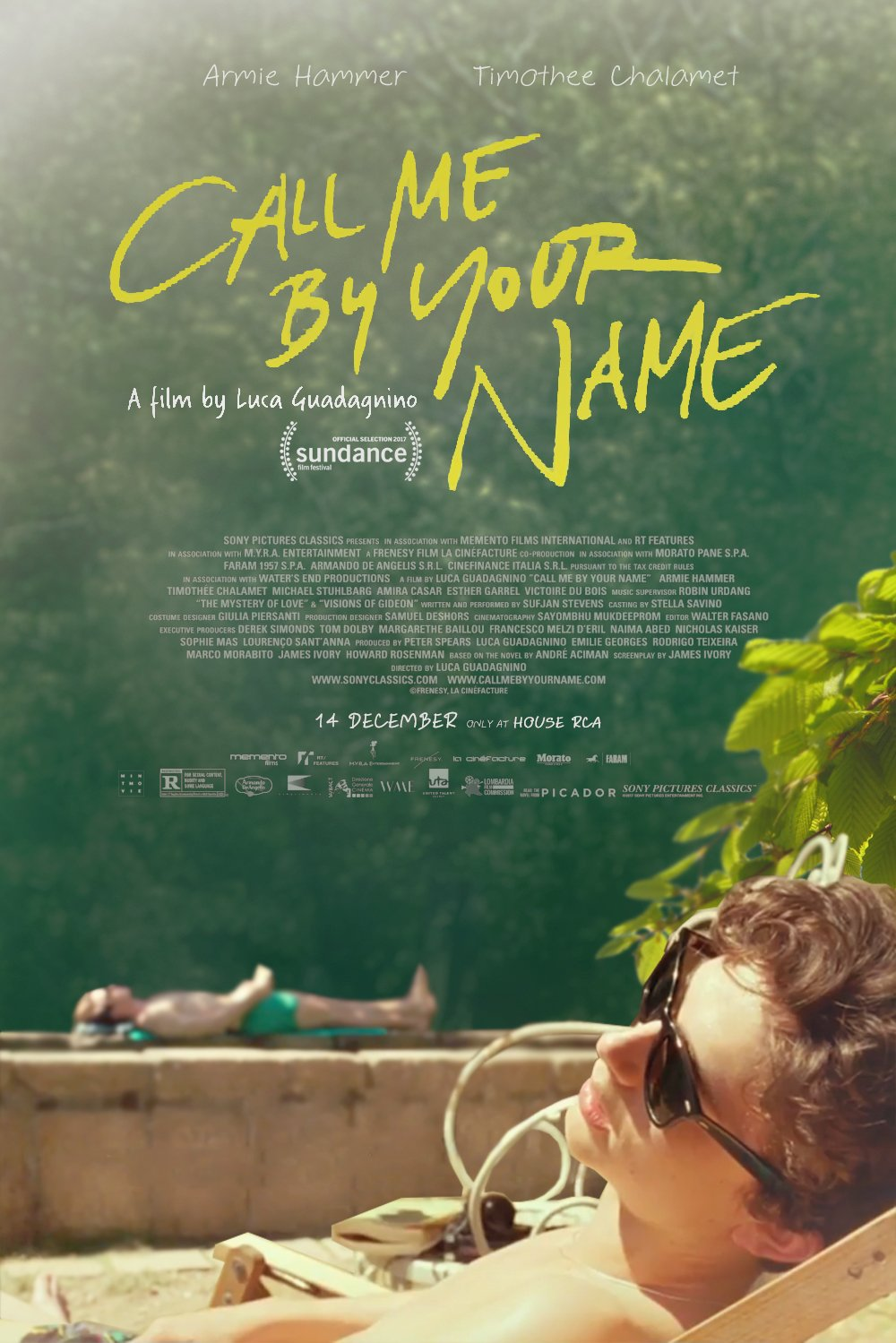 Image result for call me by your name film poster