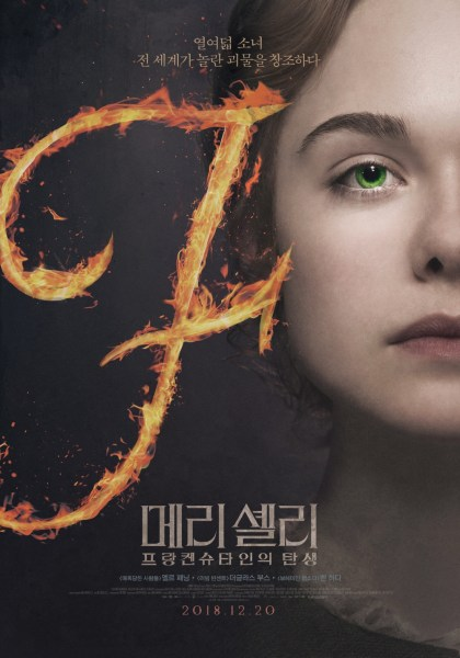 Mary Shelley Korean Poster