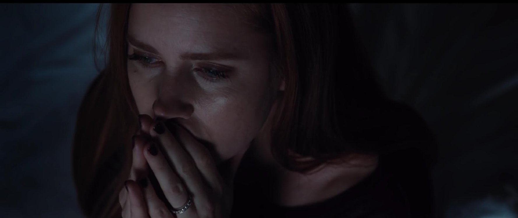 Image of: Theaters November Nocturnal Animals 2016 Teaser Trailer Nocturnal Animals Teaser Trailer