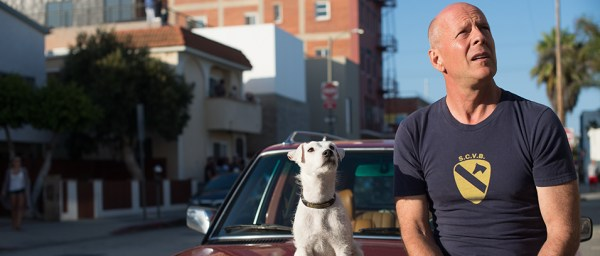 Once Upon A Time In Venice Movie - Bruce Willis and a white dog