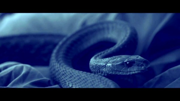 Serpent Movie