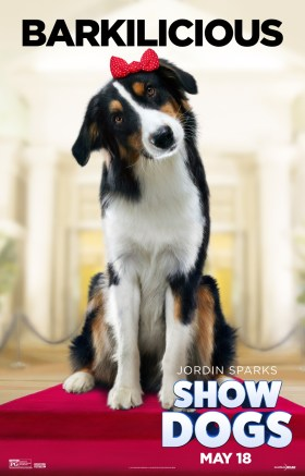 Show Dogs - DAISY