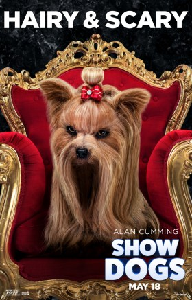 Show Dogs - DANTE