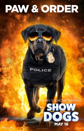 Show Dogs - MAX