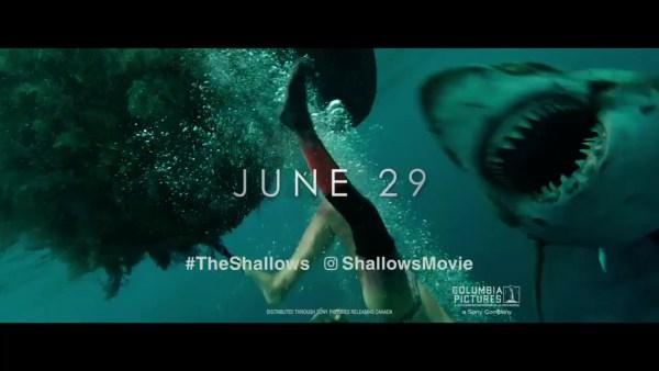 The Shallows - Shark