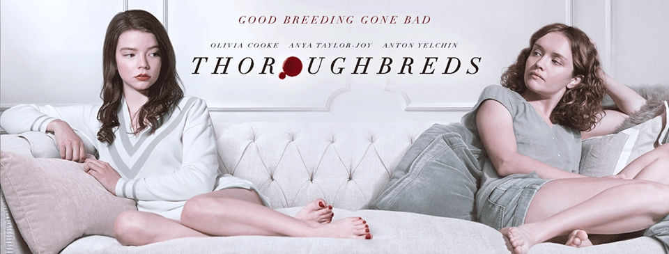 Image result for thoroughbreds 2018