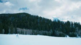 Wind River Film