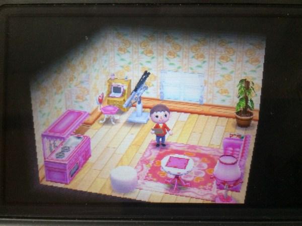 ラブリーな部屋 どうぶつの森ハッピーホームデザイナー