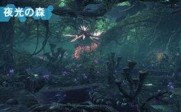 夜光の森 ゼノブレイドクロス XenobladeX