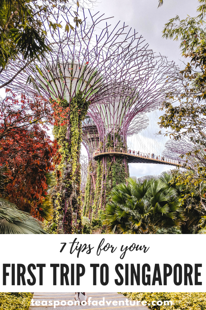 Headed to Singapore? Check out some quick tips and tricks for your first trip to Singapore! #travel #traveltips #singapore
