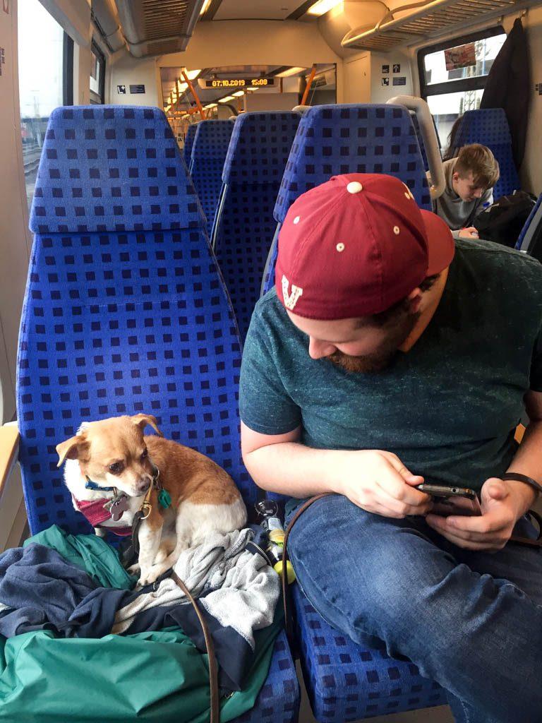 S Bahn in Nuremberg