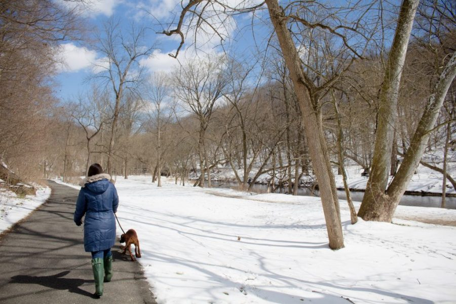 Snow in D.C. is beautiful and makes any visit better! | Teaspoon of Nose