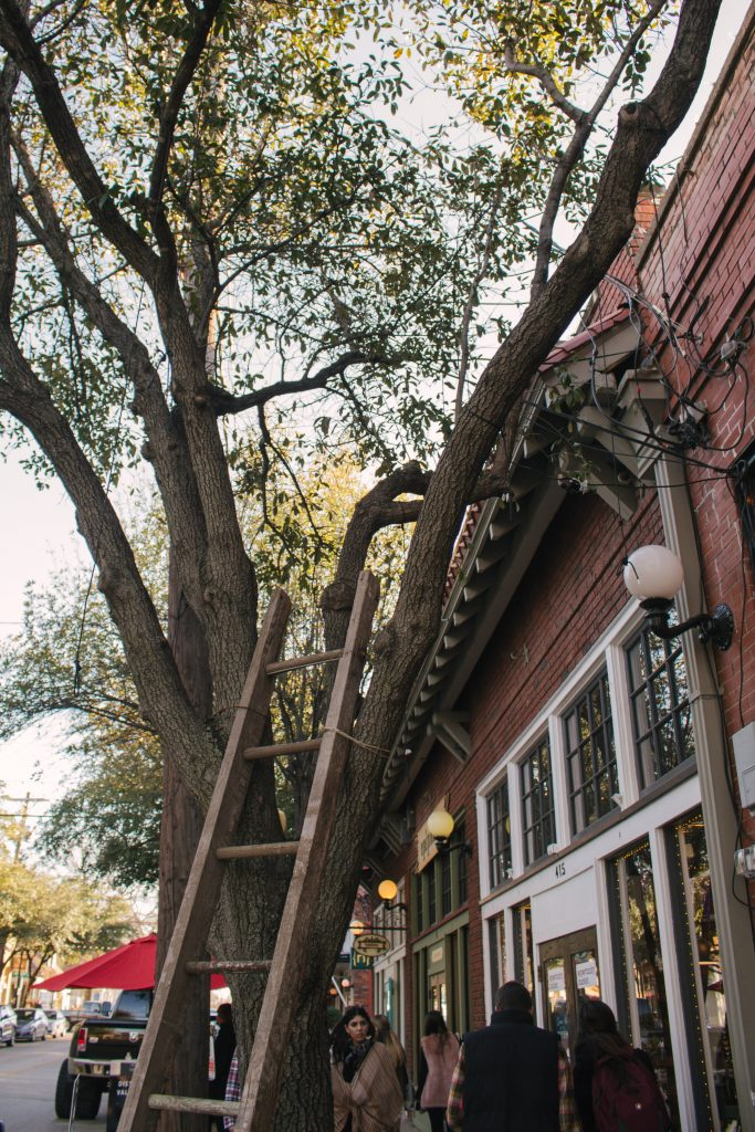 If you're looking for a fun weekend getaway try the Bishop Arts District of Dallas, Texas. It's got all the amenities of a big city in a cozy street feel! | Teaspoon of Nose