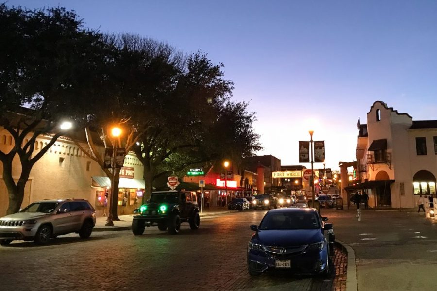What's better than exploring a new city? Exploring it without spending any money!! Here are a few free things to do in Fort Worth, Texas. | Teaspoon of Nose