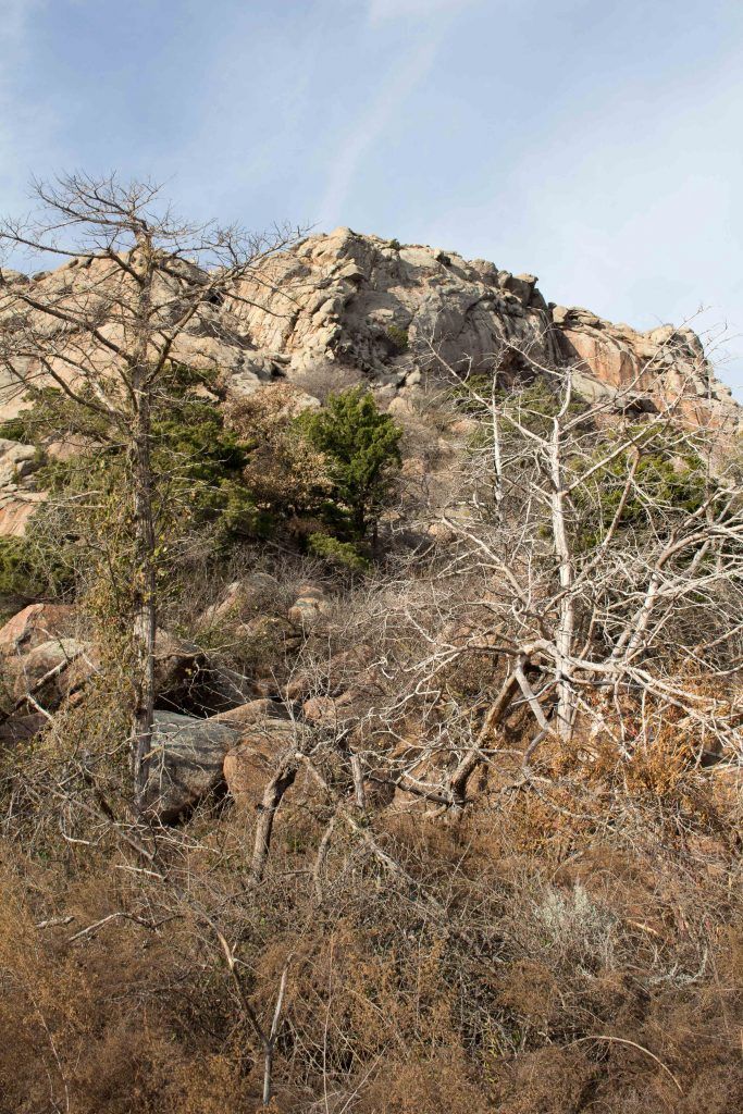 Our closest hiking spot is Quartz Mountain, which is rustic and beautiful! | Teaspoon of Nose