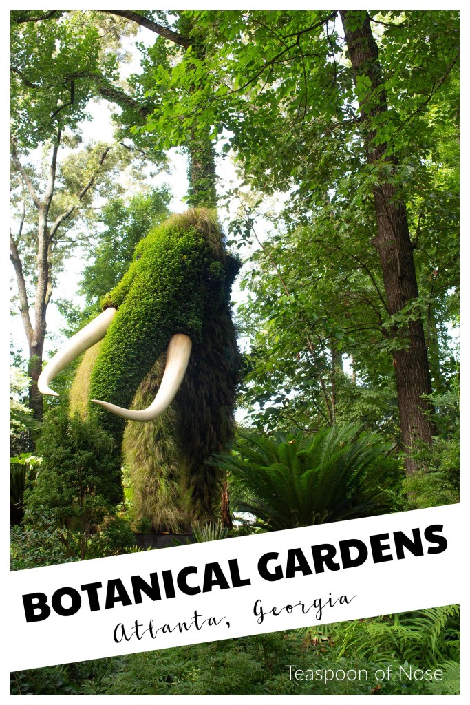 The Atlanta Botanical Garden is one of my new favorite places to get outside in Atlanta!