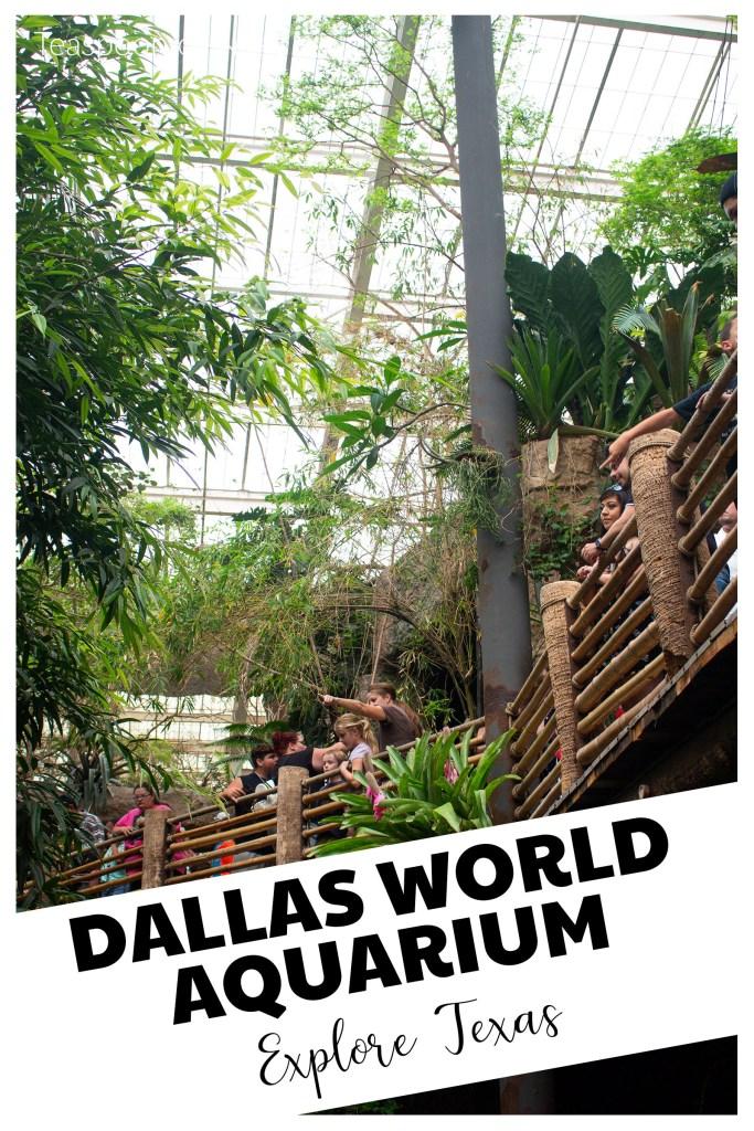 Introducing the Dallas World Aquarium!