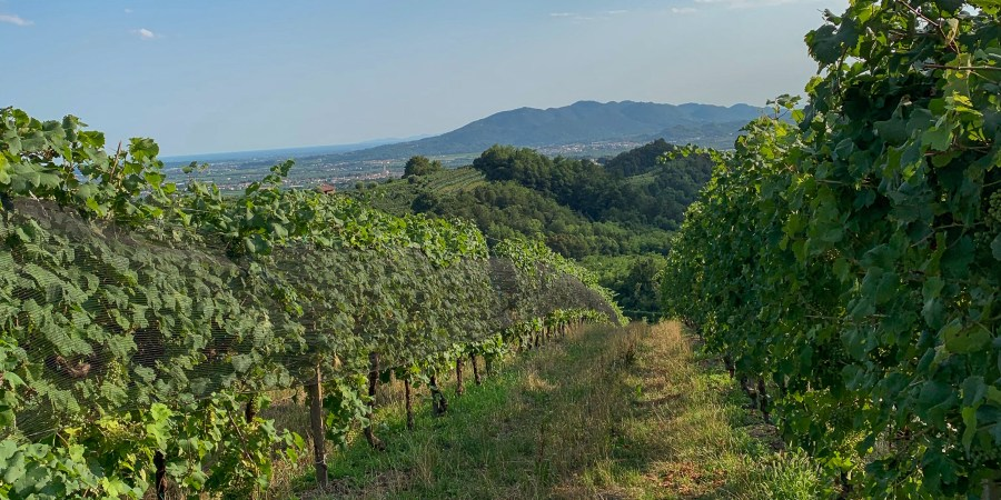 With so many vineyards dotted throughout Prosecco Road, it can be hard to choose where to go. These are my favorites and all worth a visit!