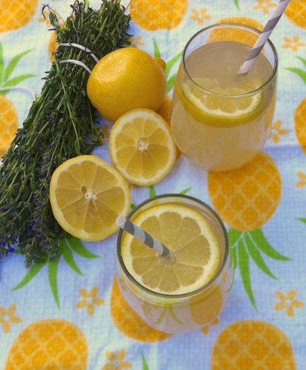 Herbal Lemonade with Blue Hyssop | Teaspoonofspice.com