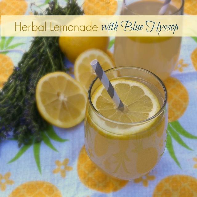 Herbal Lemonade with Blue Hyssop   Teaspoonofspice.com