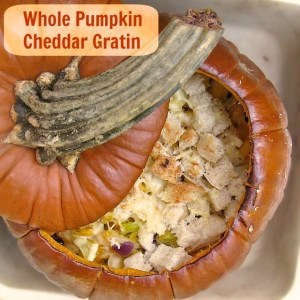 Whole Pumpkin Cheddar Gratin | TeaspoonofSpice.com