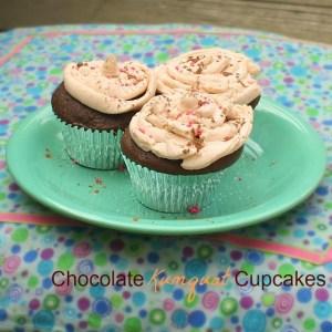 Chocolate Kumquat Cupcakes