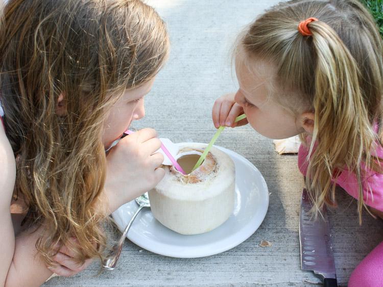 How to Crack a Fresh Young Coconut: FRESH COCONUT PINA COLADAS   @TspCurry