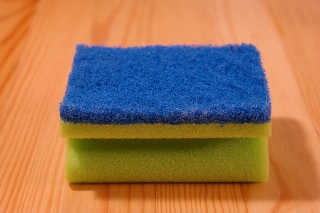 #HealthyKitchenHack - Kitchen Sponge vs Dish Rag: Which is better | @tspcurry