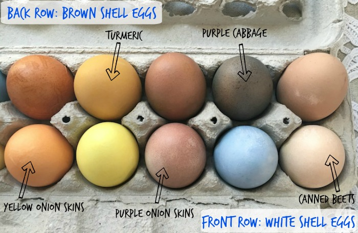 How to make natural dyes for Easter Eggs! @tspbasil