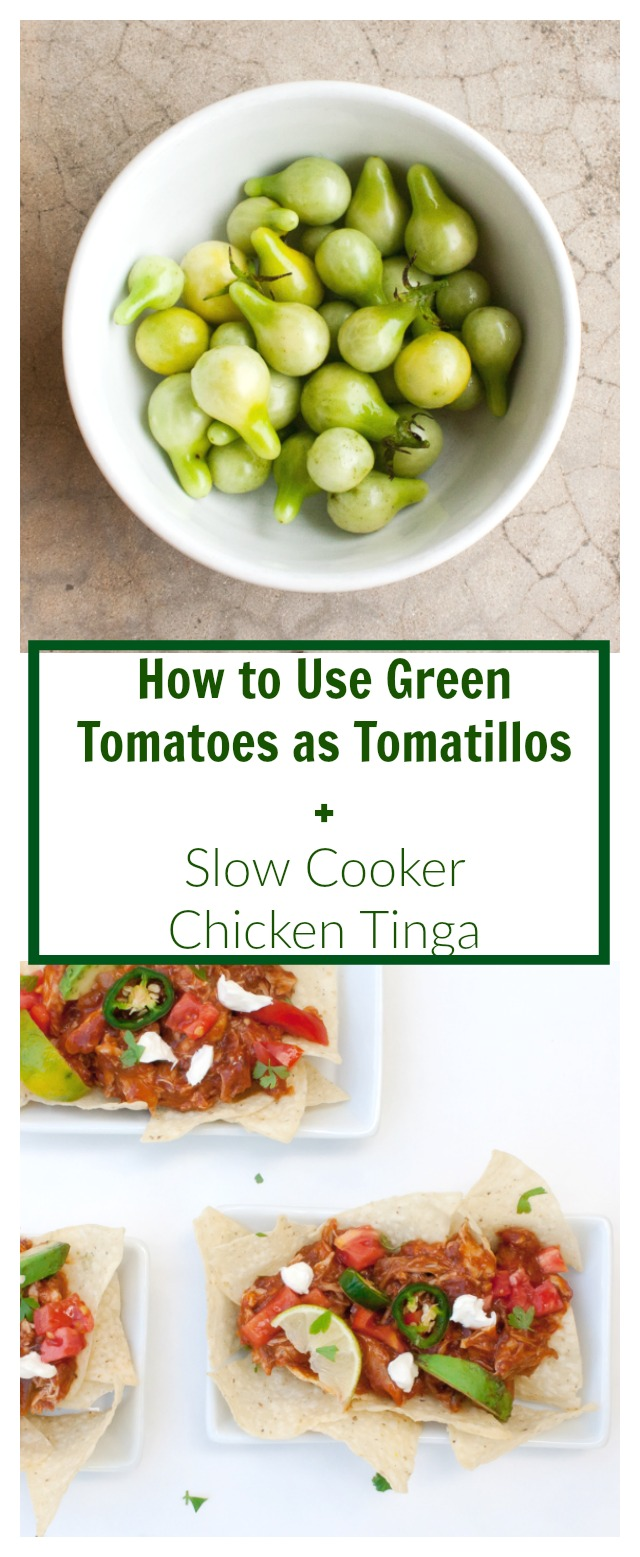 Use up your green tomatoes! HOW TO USE GREEN TOMATOES AS TOMATILLOS + SLOW COOKER CHICKEN TINGA WITH CHIPS | @TspCurry
