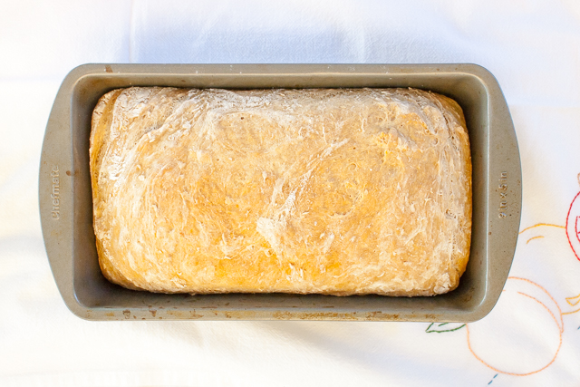 An easy schedule to roadmap how long it takes to make bread: HOW LONG DOES BREAD HAVE TO RISE | @TspCurry #whole wheat oatmeal bread