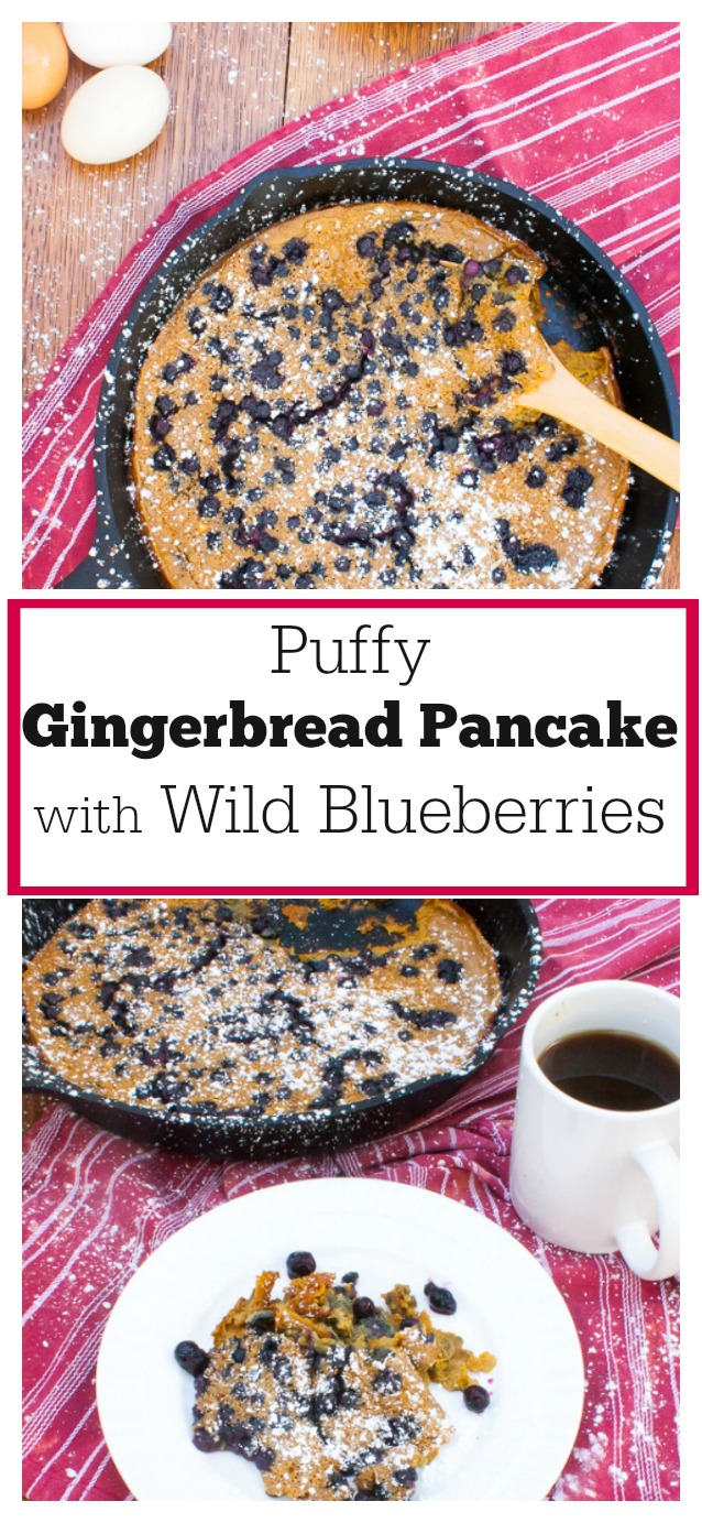 #AD: Make this crowd-pleasing holiday brunch dish in only 20 minutes: Puffy Gingerbread Oven Pancake with Wild Blueberries | @Tspcurry - For more BRUNCH recipes go to TeaspoonOfSpice.com