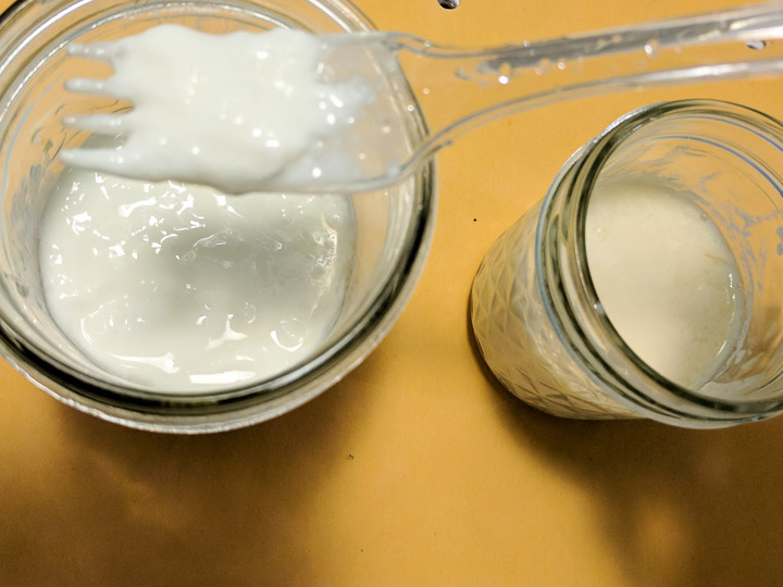 How to Make Homemade Kefir from Almond Milk Soy Milk | @TspCurry