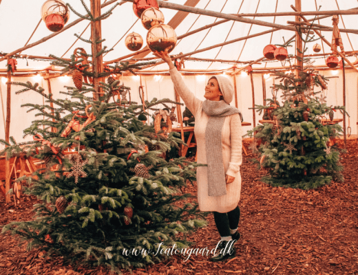 Jul på mange sprog, god jul på forskellige sporg, god jul på 25 sprog, juleblog, rejseblog, travelblog, travelblogger, danish travelblogger, blogger fra Denmark, blog om jul, god jul til alle, jule aktiviteter,